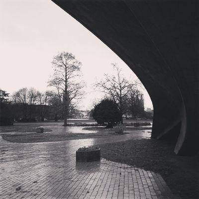 Tristesse #koeln #cologne #thisiscologne #koelnergram #rheinpark #herbst #autumn Autumn Cologne Herbst Thisiscologne Koeln Koelnergram Rheinpark