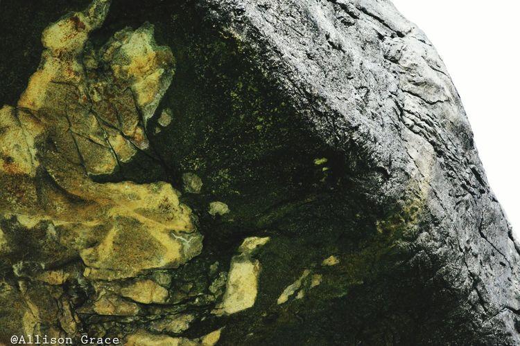 Stone Close-up