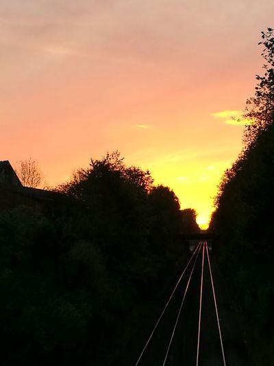 Orange Sky Sunset Train - Vehicle Transportation Rail Transportation Railroad Track Tree Silhouette Sky No People Dusk Outdoors