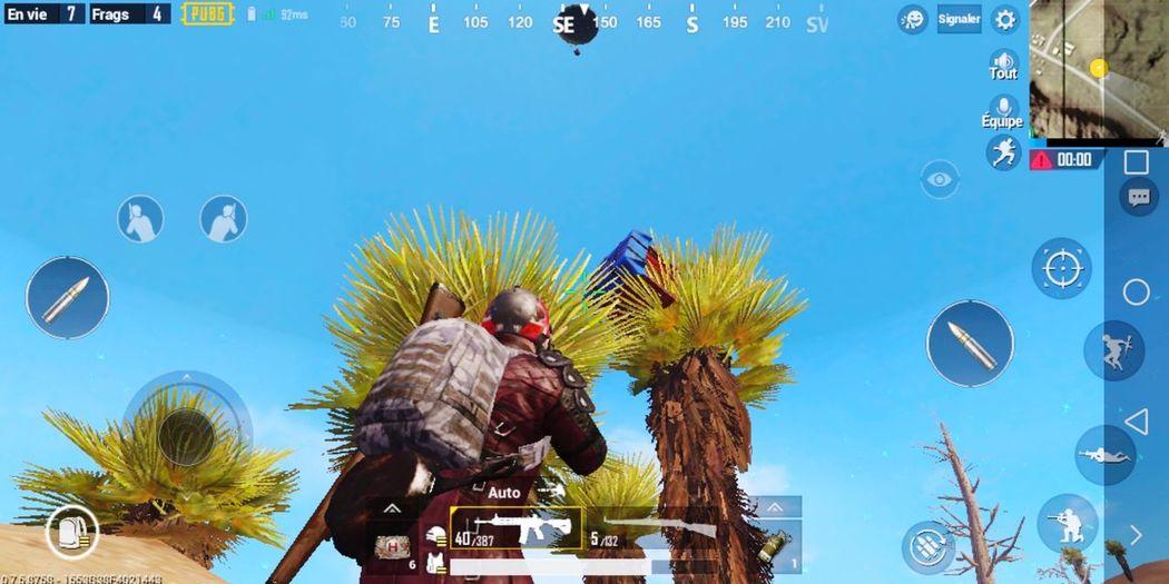 bad luk and good luk Mejjor MIRAMAR  PUBG Droop EyeEm Selects Tree Palm Tree Sky