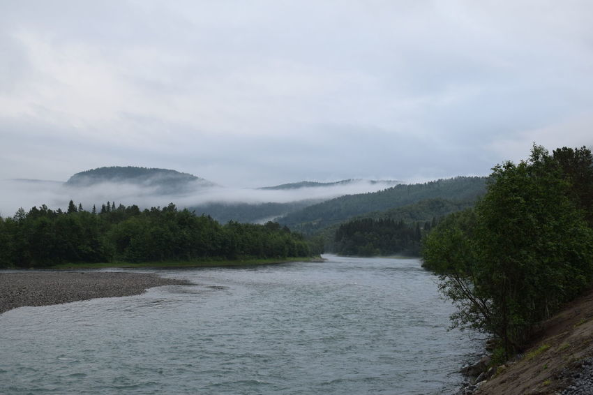 Fogg over river, Beiarn, Norway Fog Foggy Morning Foggy Morning Over River Foggy Morning Over The Water Mountains Water Sky Beauty In Nature Scenics - Nature No People Tranquil Scene Nature Tranquility River Non-urban Scene Environment Outdoors Flowing Water Power In Nature Mountain