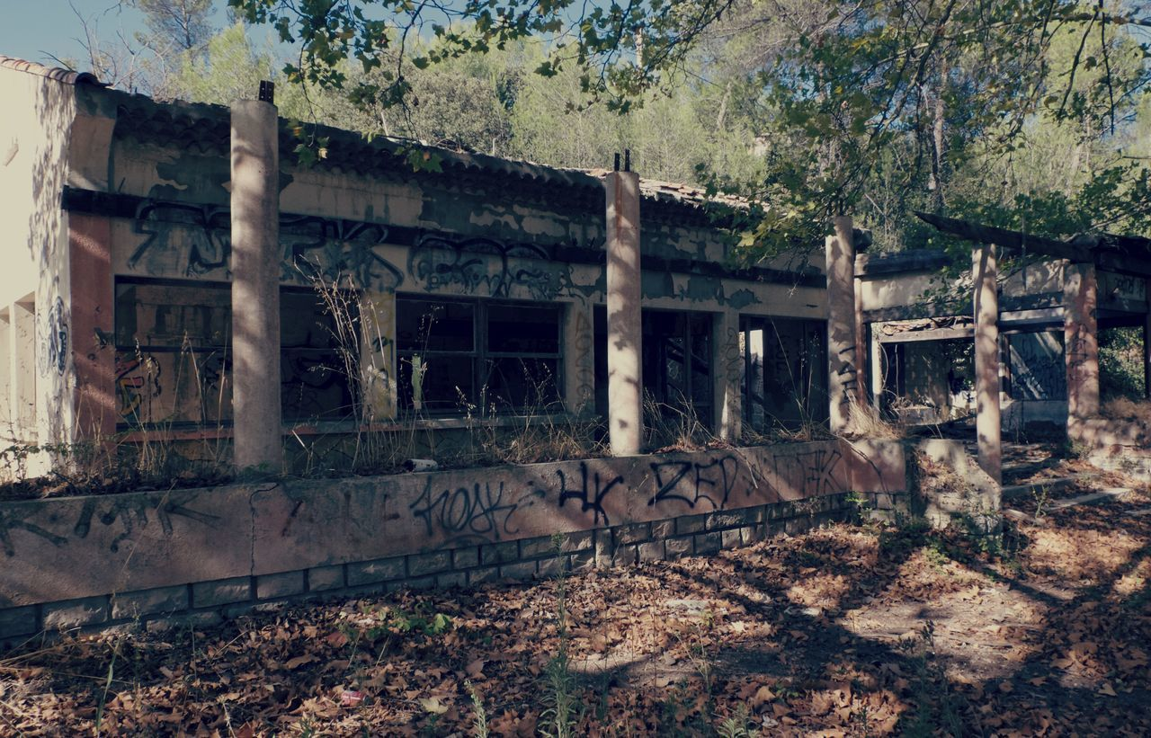 abandoned, architecture, no people, day, built structure, building exterior, tree, outdoors