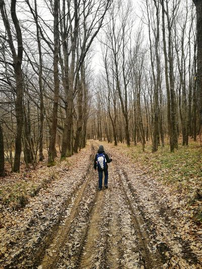 Tree Outdoors Nature Walking The Way Forward One Person Beauty In Nature Tree Travel Photography Hiking, Mountains, Adventure Hiking Adventure Hikinglife Hiking Pictures Kids Photography Forest Walk Lost In The Landscape