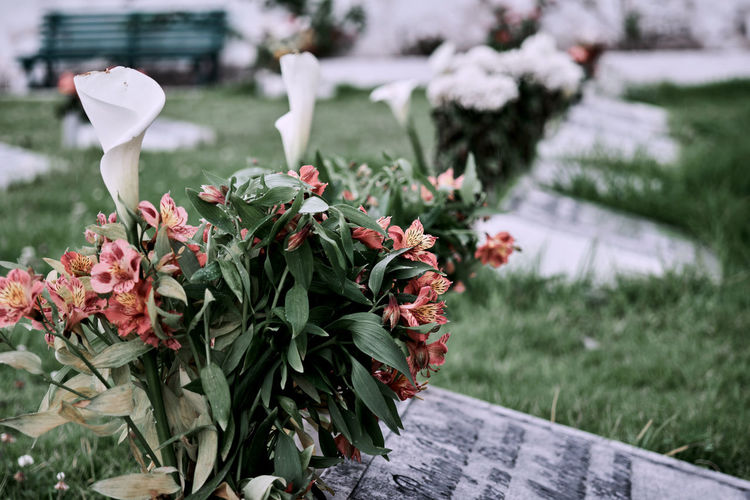 Abandoned Bouquet Cemetery Close-up Day Death Decay Fear Flower Flower Head Forgiveness Forgotten Fragility Freshness Funeral Grave Graveyard Growth Loss Lost Mourning No People Outdoors Plant Rememberance