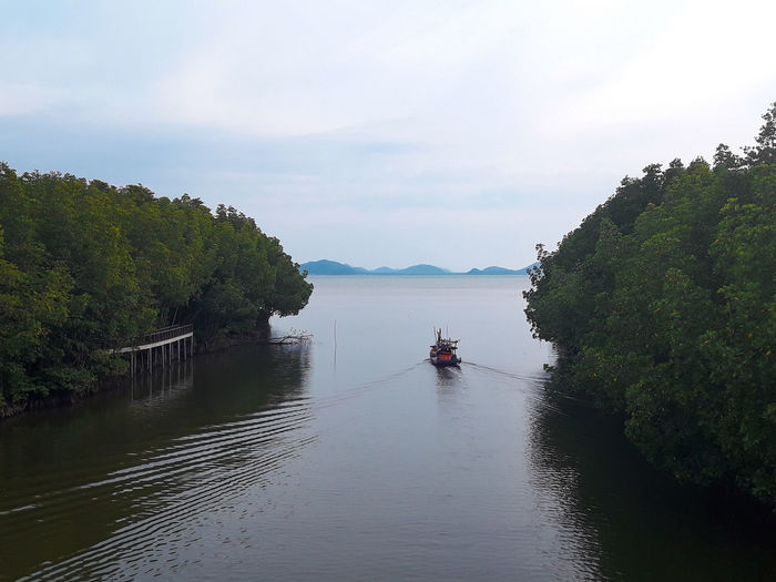 Sea of Chumphon Islands Beauty In Nature Cloud - Sky Day Green Color Growth Mode Of Transportation Nature Nautical Vessel No People Non-urban Scene Outdoors Plant River Scenics - Nature Sky Tranquil Scene Tranquility Transportation Tree Water Waterfront