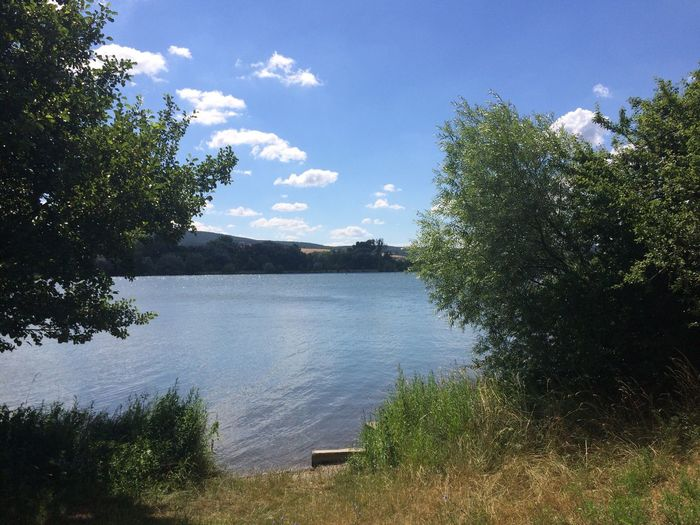 Lakeview Piešťany Slovakia Sĺnava Lake View Blue Sky White Clouds Water Green Grass Trees Summertime Nature Landscape Summer Relaxing Vah