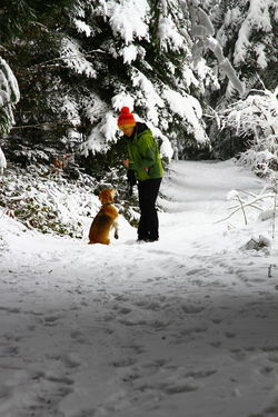 Adult Adventure Beauty In Nature Cold Temperature Day Dog Domestic Animals Full Length Mammal Men Nature One Man Only One Person Outdoors People Pets Real People Snow Standing Warm Clothing Weather White Color Winter