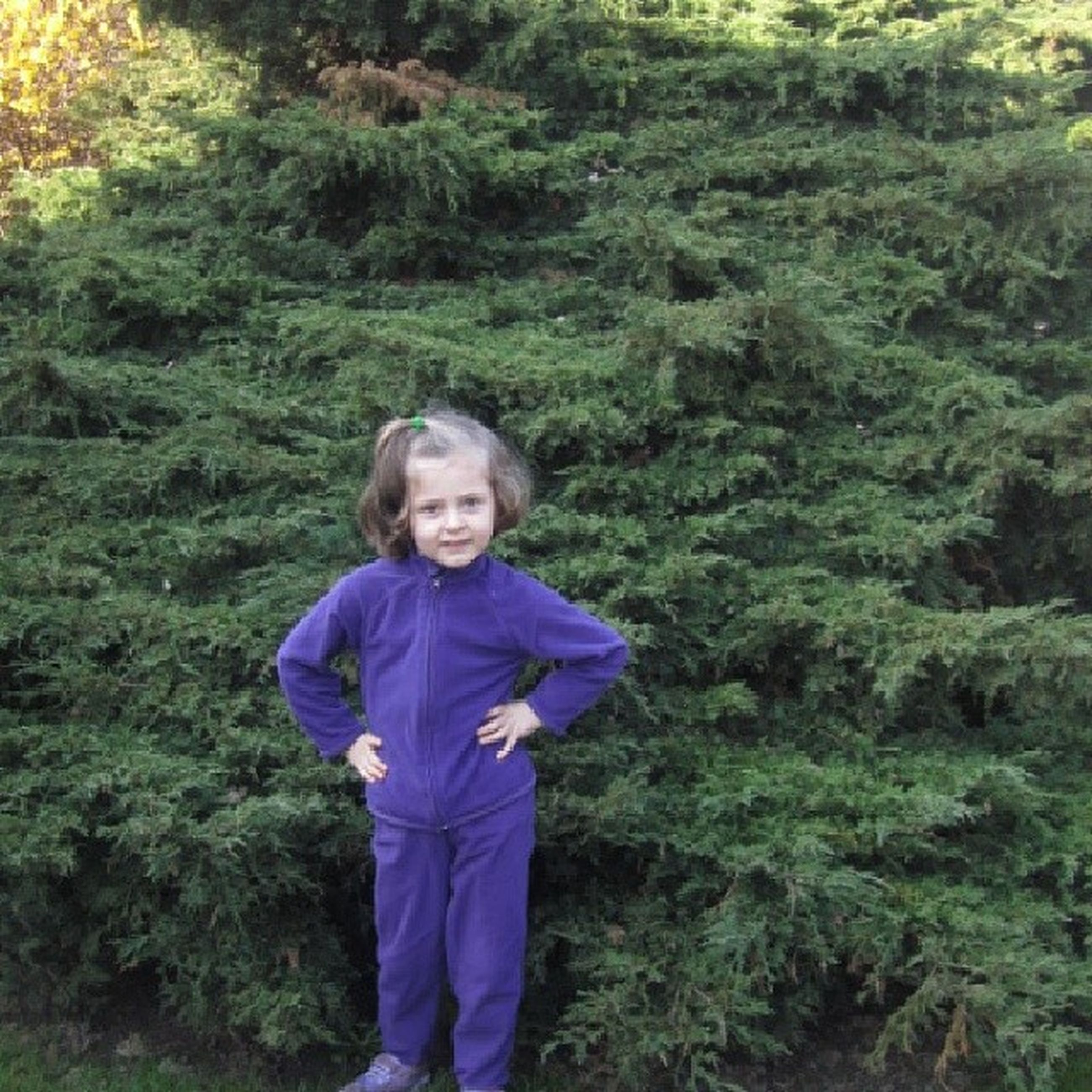 person, looking at camera, lifestyles, casual clothing, portrait, leisure activity, smiling, standing, happiness, front view, tree, elementary age, three quarter length, young adult, green color, childhood, full length, grass