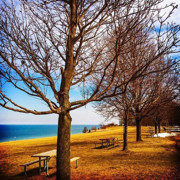 Fort Niagara State Park Springhassprung