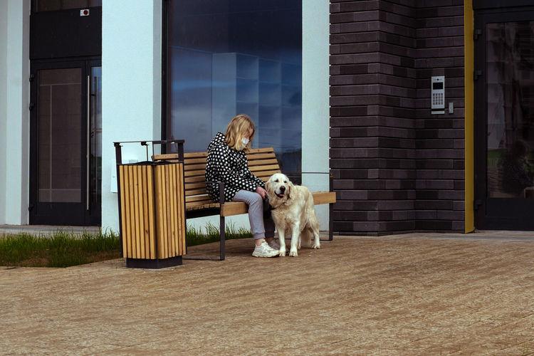 Dog outside house against building