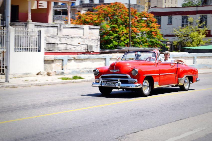 Old Cars Havana Cuba