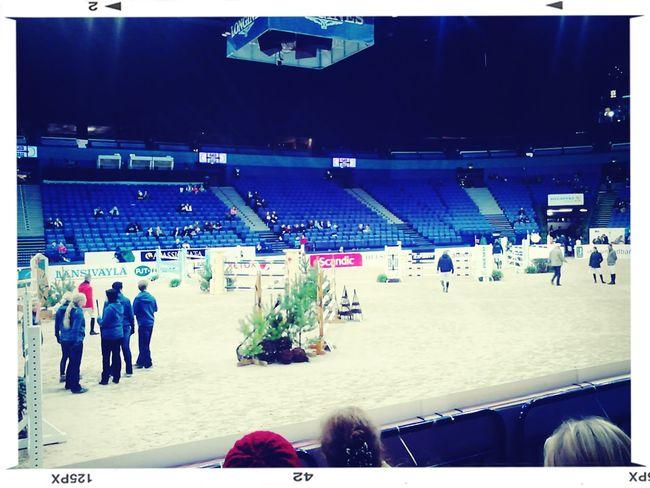 Helsinki international up horse show:) Finland