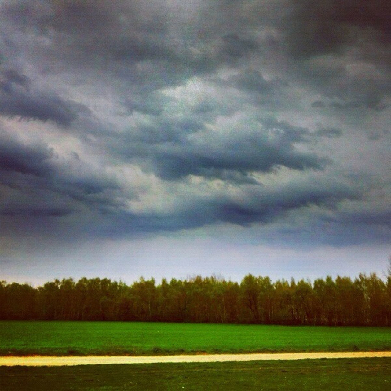 tranquility, tranquil scene, landscape, sky, beauty in nature, tree, nature, cloud - sky, scenics, field, weather, grass, no people, outdoors, storm cloud, day, silhouette, scenery