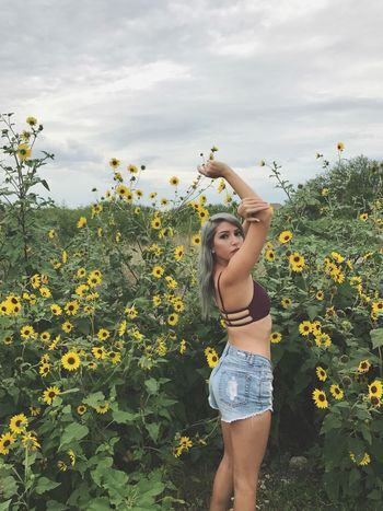 Favorites Random Austin Sunflowerpatch Zaful