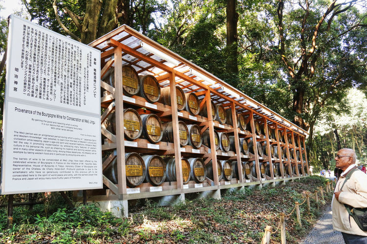 Japan Meiji Shrine Peaceful Tokyo Tourist Attraction  Tranquility Barrels Of Wine