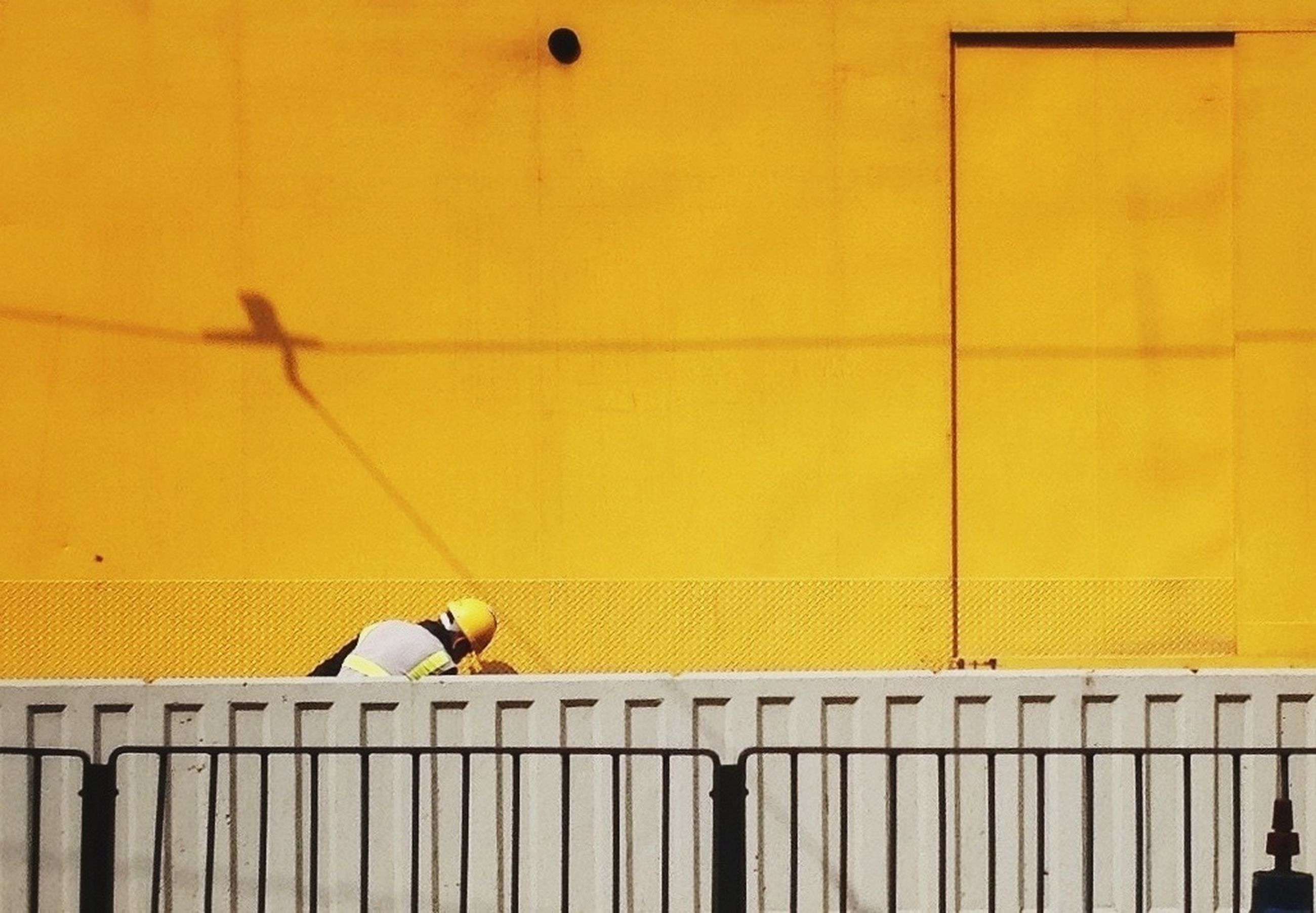 animal themes, one animal, yellow, railing, bird, built structure, architecture, wildlife, wall - building feature, animals in the wild, perching, building exterior, steps, full length, pets, low angle view, one person, wall, domestic animals, side view