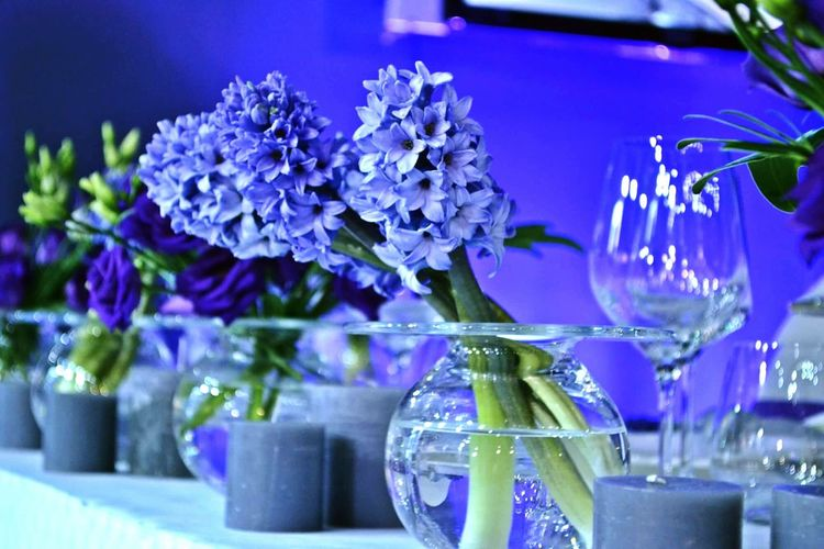 Flower Fragility Nature Blue Orchid Purple Flower Head Vase Plant Beauty In Nature Freshness Focus On Foreground No People Petal Hyacinth Table EyeEmNewHere close-up Water Flower Arrangement Gameofcolors Naturalflower WeedingTime Table Decoration Lieblingsteil