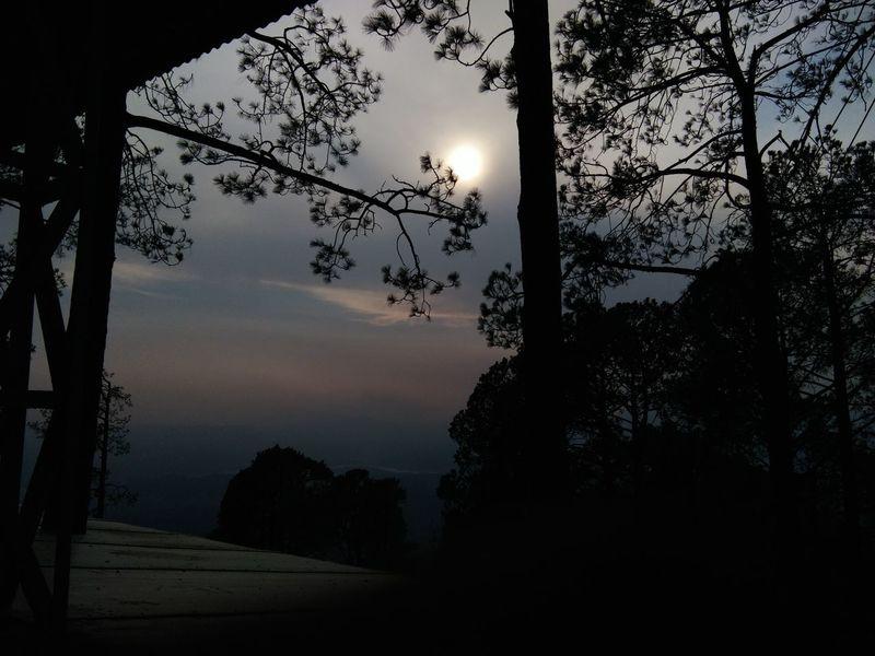 katra, jammu , India Katra Jammu Nature Sunset Sun Behind Trees Top Of The Mountains Tree View Things I Like No Edit Original Experiences Feel The Journey India