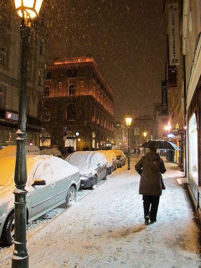 Architecture Building Exterior Car City City Life City Street Cold Temperature Illuminated Night Rear View Snow Snowing Street Street Light Walking Warm Clothing Winter