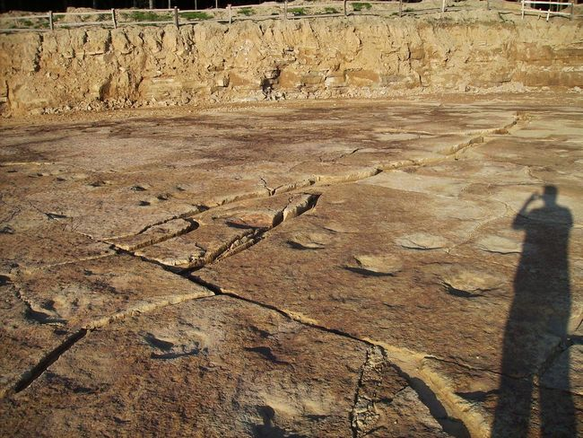 Dinosaurier  Dinosaurierfährten In Den Obernkirchener Sandsteinbrüchen Dinosaurierspuren Dinospuren Outdoors Raptoren Theropoden