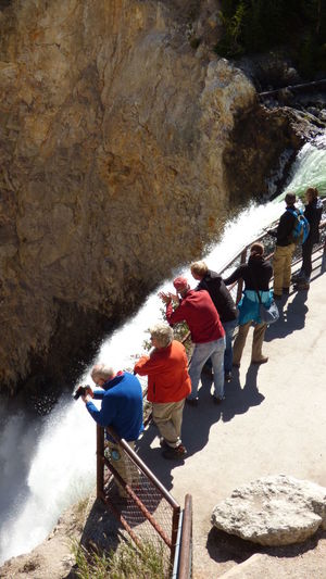 People Waterfall Grand Canyon Of The Yellowstone High Angle View Outdoors Outdoor Photography Nature Sunny Day