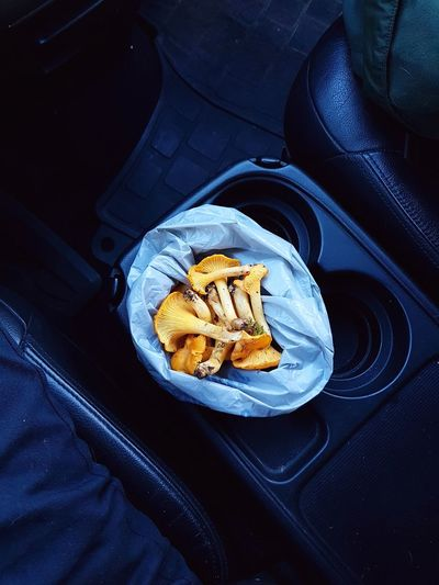 bag of chantarelles at night in car Food And Drink Food Roadtrip Foraging Fresh Chantarelle Chantarelles Mushroom Mushrooms Car Interior Night Dark Food Photography Dark Darkness High Angle View Close-up Food And Drink Dark Blue