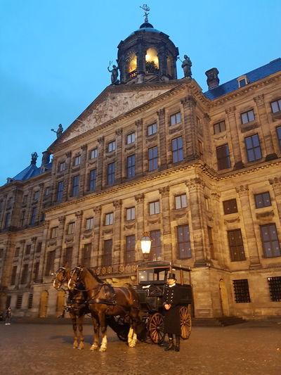 Amsterdam An