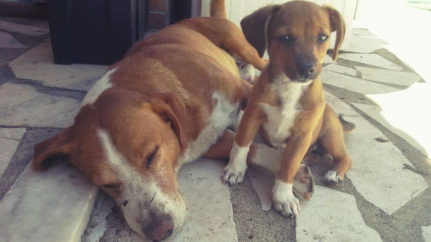 love my babys ✋