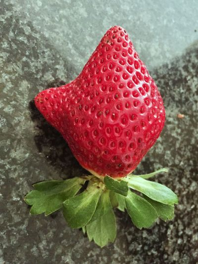 Red Close-up Freshness Food And Drink Leaf No People Growth Food Nature Healthy Eating Fruit Day Indoors