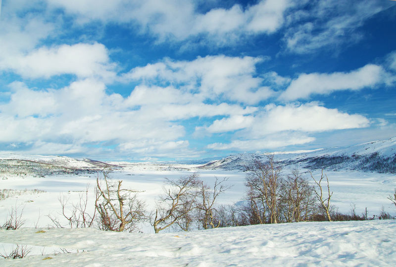 Norway Beauty In Nature Cloud - Sky Cold Temperature Day Hardangervidda Landscape Nature No People Outdoors Scenics Sky Snow Tranquil Scene Tranquility Tree Weather White Color Winter
