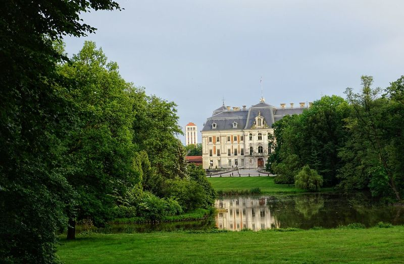 The Castle in Pszczyna has a beautiful Park where you can calm down after a stressful day Poland Museum Sony A6000 Travel Travel Destinations Landscape_photography Landscape Architecture View EyeEmNewHere Szlak Orlich Gniazd Castle Castles History Through The Lens  Tree Residential Building House Water Architecture Building Exterior Sky Grass Built Structure History Historic Building The Past