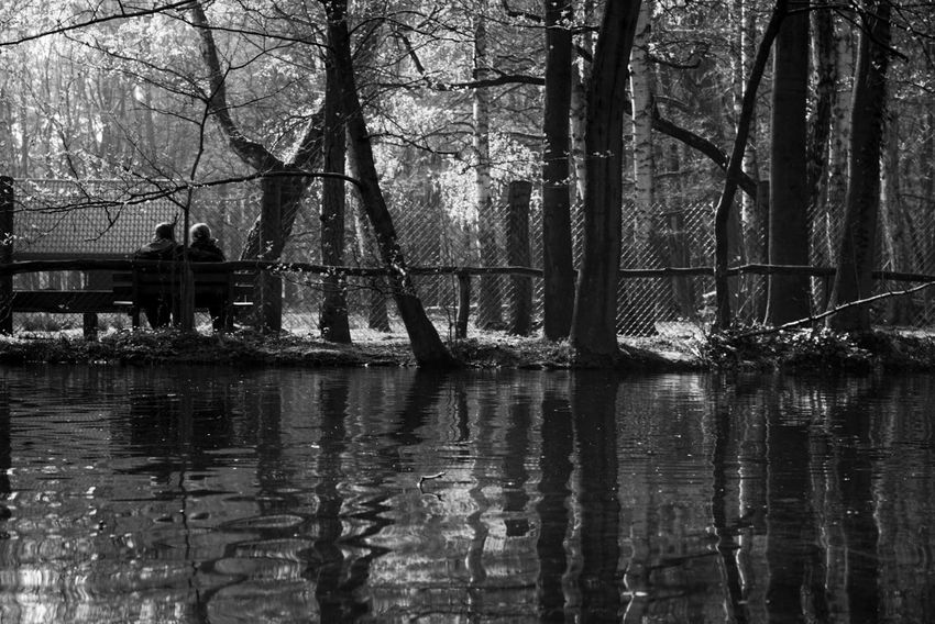 Tree Outdoors Water Day Built Structure Architecture Nature City Real People Sky Long Goodbye Nature Sunday Forest A6000 Beauty In Nature Berlin, Germay Grey Blackandwhite Couple - Relationship Couple Love Full Frame Travel Destinations River