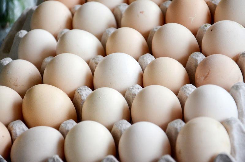 Full frame shot of eggs in carton
