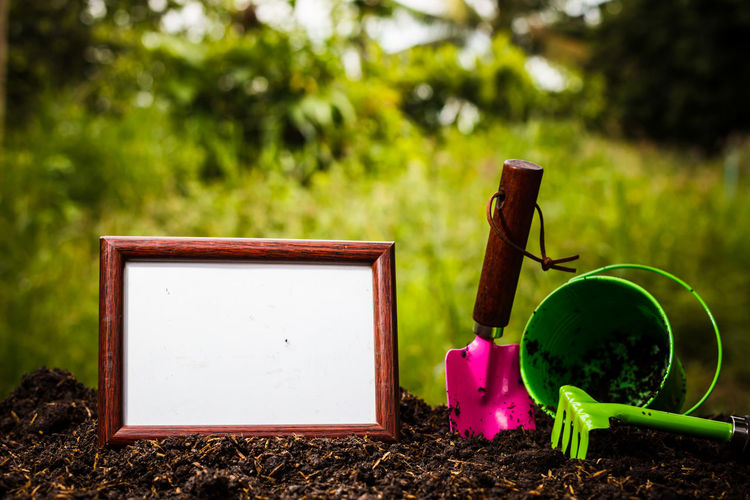 Blank picture frames on the Nature background Beauty In Nature Blank Close-up Container Day Dirt Environment Field Focus On Foreground Gardening Grass Green Color Growth Hand Tool Land Nature No People Outdoors Plant Tree Watering Can