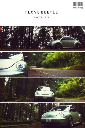 Car VW Beetle New Beetle Taiwan