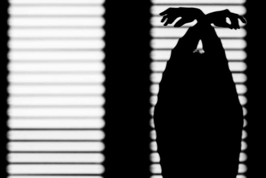 Flying alone Light And Shadow Light Silhouette EyeEm Best Shots EyeEm Getting Inspired Canon Eye4photography  Black & White Blackandwhite Eye4black&white  Blackandwhite Photography Bw_collection EyeEm Gallery Black And White Portrait Bw_lover EyeEmBestPics Shadow Shadows & Lights
