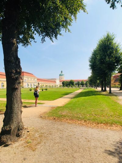 Charlottenburg Tree Plant Real People Sky Nature Day Lifestyles One Person Men Women Architecture Park Park - Man Made Space Adult Sunlight Leisure Activity Growth Outdoors Grass