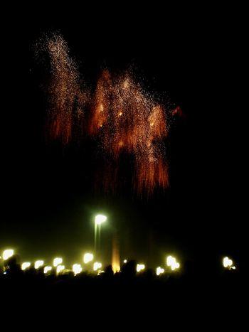 Night Illuminated Celebration Outdoors Sky Firework Camel Animal