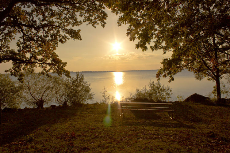 Bench At Lakeshore During Sunset