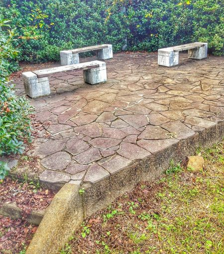 DO,RA, ME! Amphitheater Stone Benches Shurberry Stone Tile Outdoors No People Day Nature I LOVE JAPAN❤