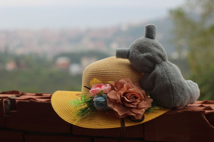 Close-up of stuffed toy and hat on table
