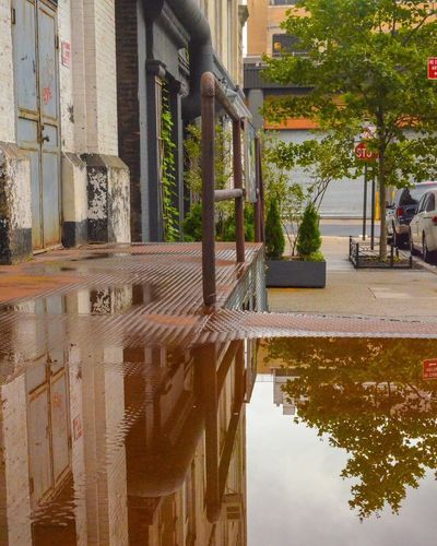 NYC NYC Photography NYC Street Photography West Side Puddleography Puddle Reflections