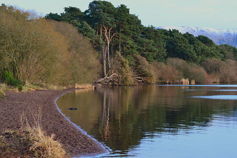 Reflection Loch Leven Loch  Tree Tranquil Scene Tranquility Nature Scenics Lake Beauty In Nature Mountain Landscape Water