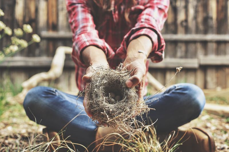 Low Section Of Woman Holding Nest