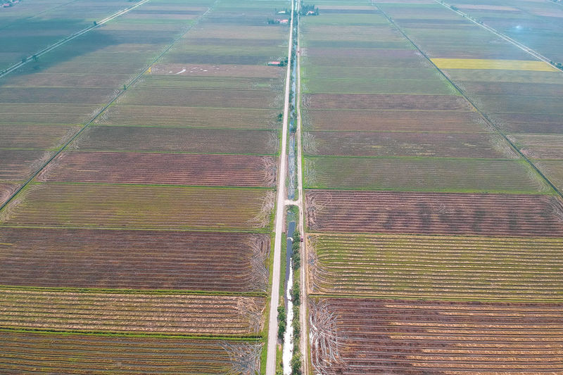 Irrigation Equipment Rural Scene Plowed Field Cereal Plant Agriculture Aerial View Field Patchwork Landscape Pattern Crop