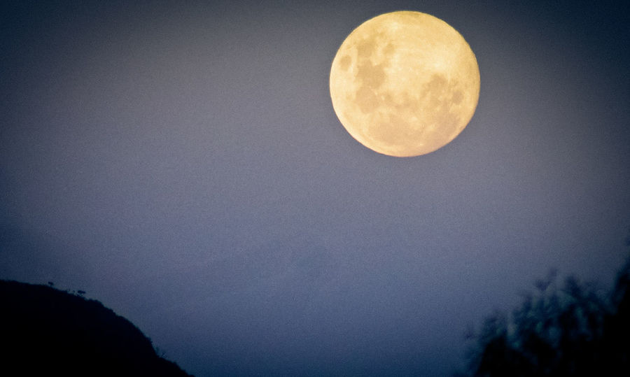 Astronomy Beauty In Nature Moon Moon Surface Moonlight Night Outdoors Sky Space Tranquil Scene