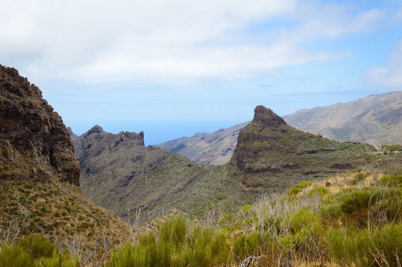 Rocky landscape under a blue cloudy sky on Tenerife island, Spain Grass Lonely Nature Rocky Scenic Tranquility Travel Beauty In Nature Day Environment Far Fine Art First Eyeem Photo Horizon Idyllic Land Landscape Mountain Range Mountains No People Plant Remote Scenics Scenics - Nature Sky