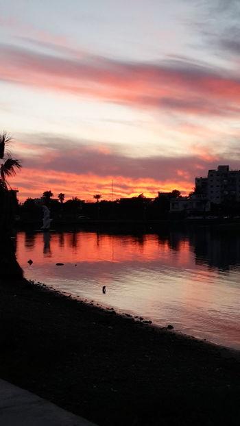 Sunset Palmbeach PalmHouse Cyprus Famagusta