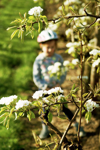 Nature Outdoors Reflection One Person Flower Focus On Foreground Day Plant Portrait Beauty In Nature Tree Lake Young Adult Blosoming And Growing Child Kidsphotography Sun Haspengouw Zepperen