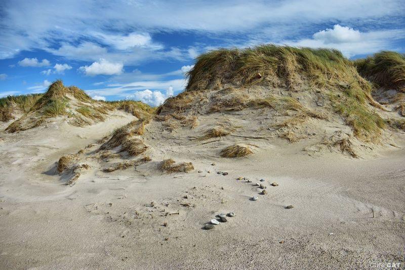 Bjerreborg Strand Denmark Denmark 🇩🇰 Landscape_Collection EyeEm Nature Lover EyeEm Masterclass Northsea Dunes Dunescape Beach Photography Stones Sand Dune Beach Sand Sky Landscape Cloud - Sky
